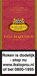 Hajenius Grand Corona AT