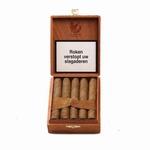 Olifant Robusto 10 10 sigaren