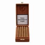 Olifant Panarillo 10 10 sigaren